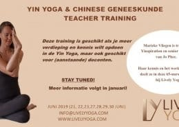 Yin Yoga & chinese geneeskunde Teacher Training