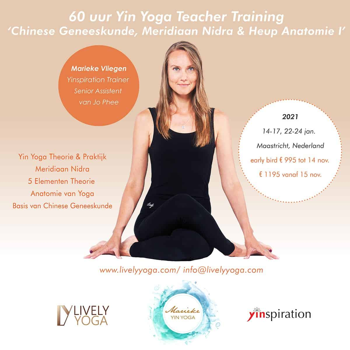 yin yoga en chinese geneeskunde teacher training 65 uur